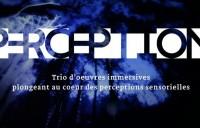 P3RCEPTION